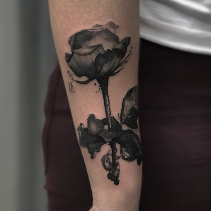 nice-rose-by-wojtek